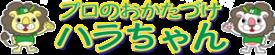大阪・奈良・兵庫・滋賀で遺品整理や不用品回収なら | プロのおかたづけハラちゃん